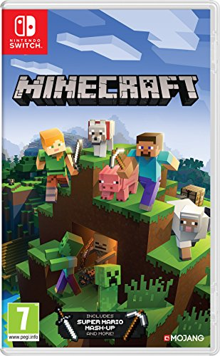 Minecraft switch standard
